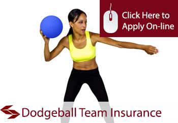 dodgeball team insurance