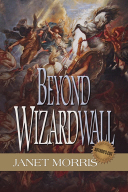Beyond WizardWall-small