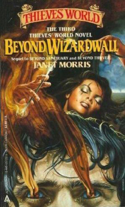 Beyond Wizardwall Ace paperback-small