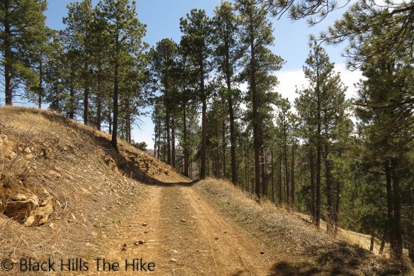Trail to White Rocks