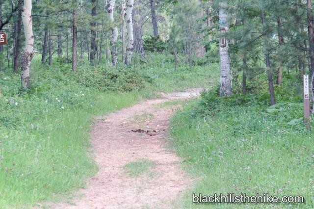 Big Hill Trails 2013