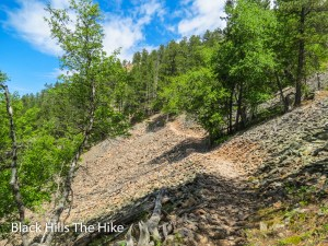The trail up Crow Peak, Spearfish, SD (2)