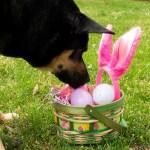 Spring Holiday – Jamie Gregson2-SpringHoliday-0003