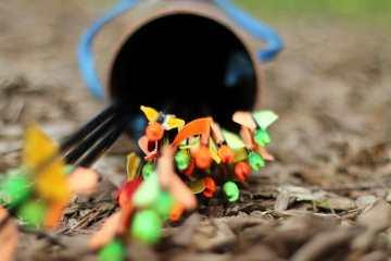 archery arrows photo