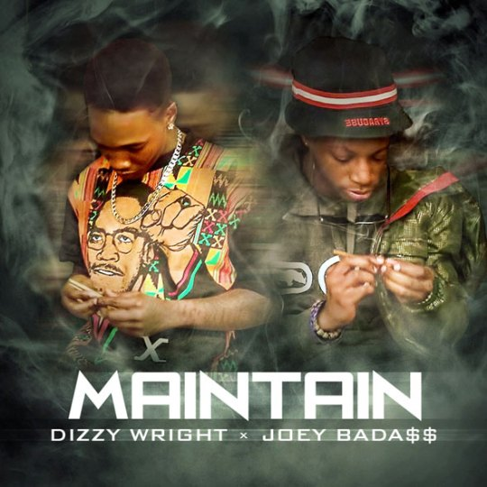 Dizzy_Joey-Maintain