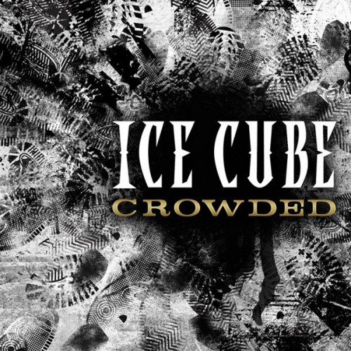 ice-cube-crowded-500x500