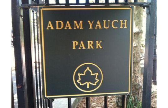 adamyauchparklead