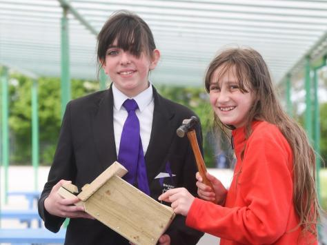 aspire Academy pupils Natasha Dyson and Jennifer Crombie work on building bird boxes for the school grounds. Picture: Daniel Martino/JPI Media