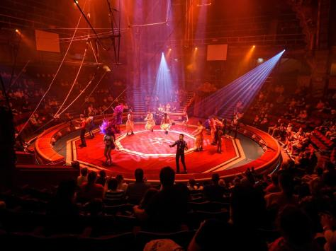 Blackpool's Tower Circus performances have been suspended for a week due to a case of Covid.