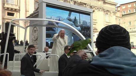 In this image made from video distributed by CTV, a man, left, offers his parrot to Pope Francis, center, during his tour through the crowd in St. Peter's Square, part of his weekly general audience at the Vatican, Wednesday, Jan. 29, 2014. (AP Photo/CTV)