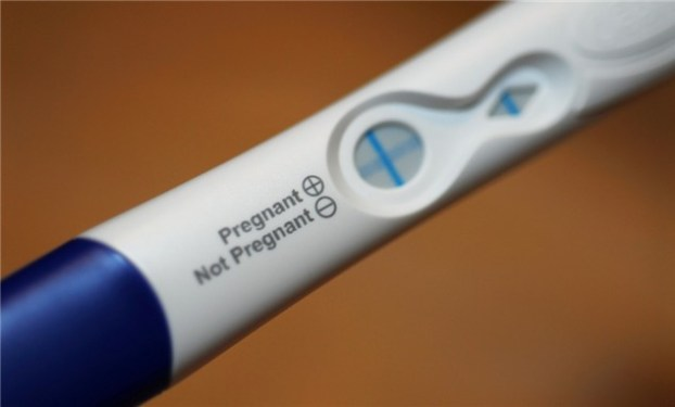 clear-blue-pregnancy-test-results