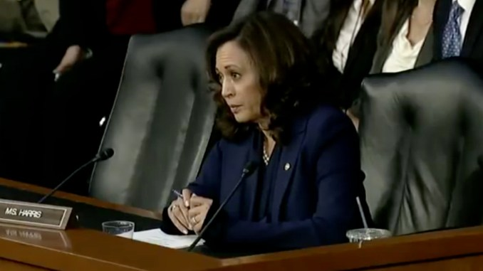 Sen. Kamala Harris questions Supreme Court Nominee Brett Kavanaugh (screen capture / YouTube)