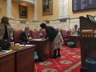 The Maryland Senate holds a session on April 3. (Photo by: William J. Ford/The Washington Informer)