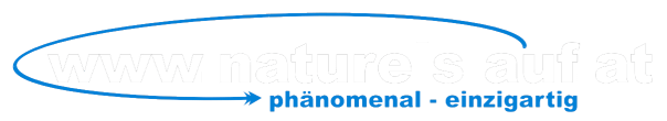 logo-natureislauf