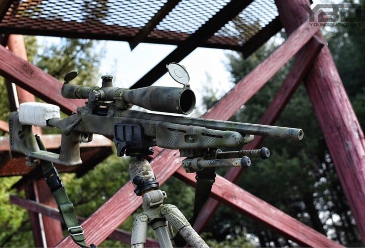 Remington LTR 308win