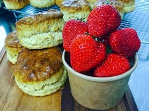 Cornish Strawberries and Scones