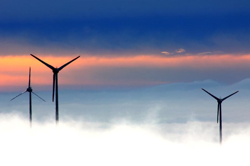 Finanzas climáticas, ¿quién interviene y qué papel juega?