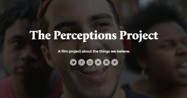 Perceptions Project image