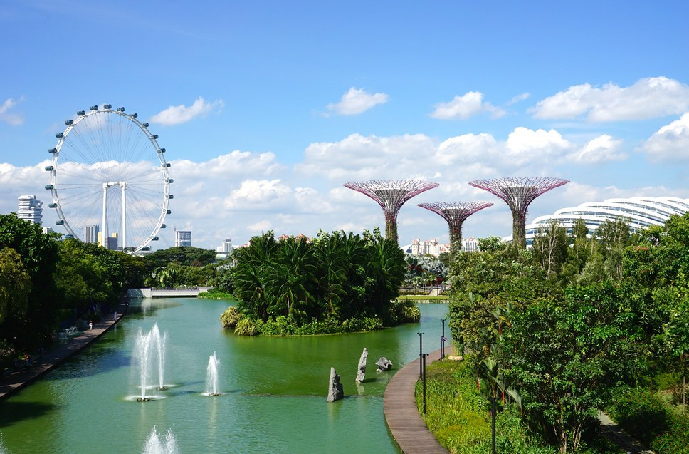 dragonfly and kingfisher lake, gardens by the bay, singapura