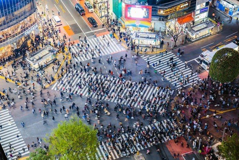shibuya pedestrian crossing, tokyo, jepang