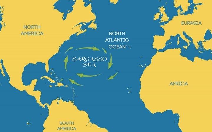 peta laut sargasso