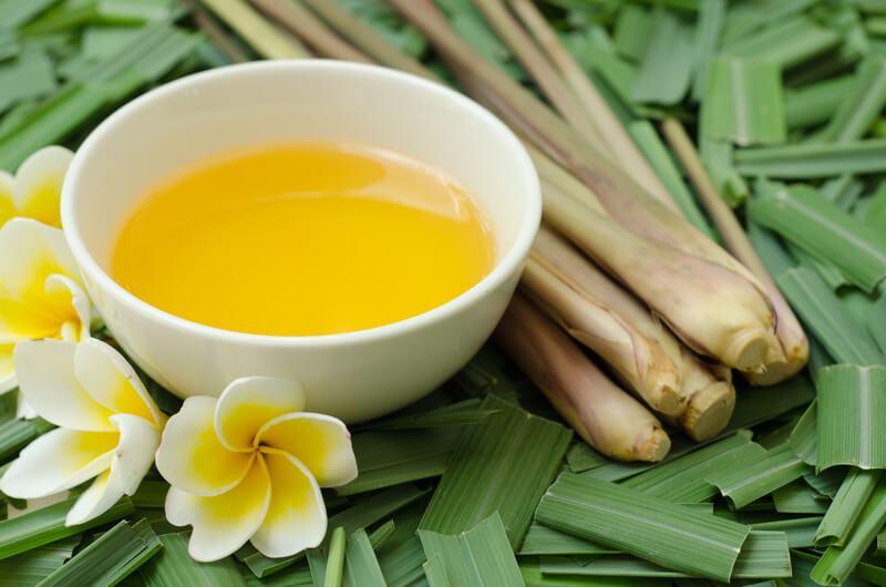 daun sereh wangi dan citronella essential oil