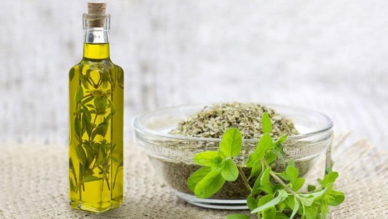 daun marjoram dan marjoram essential oil (minyak atsiri marjoram)