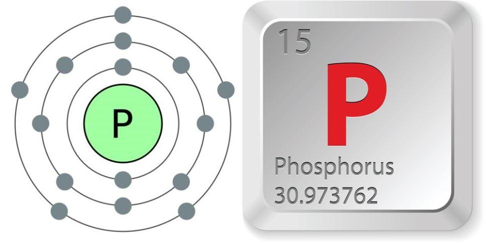 simbol kimia dan nomor atom unsur fosfor