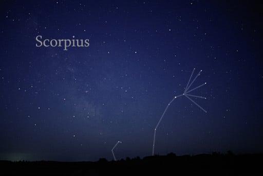 rasi bintang scorpius