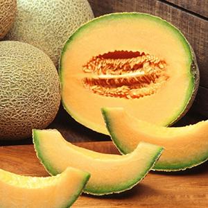 melon-et-meleche-blagues-droles