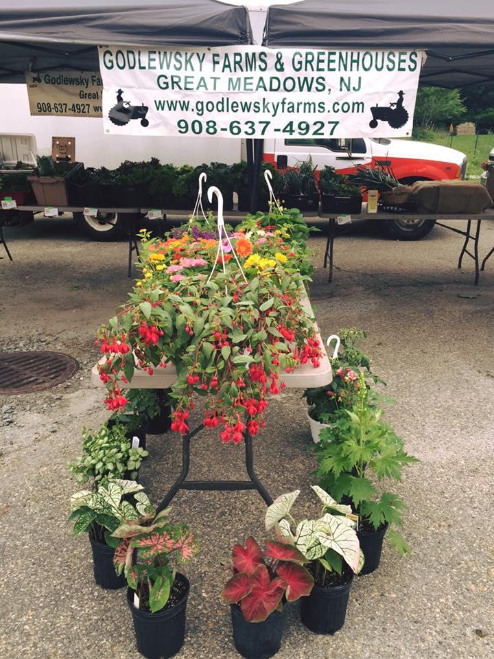 Godlewsky Market 2