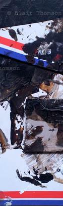 Cairngorms Forest 5 (www.blairthomson.com)