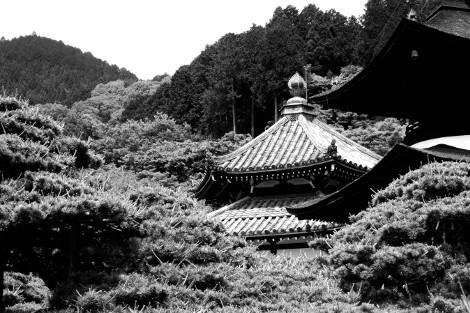 Nishiyama 7 (www.blairthomson.com)