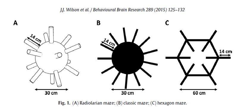 Mazes in Wilson et al 2015