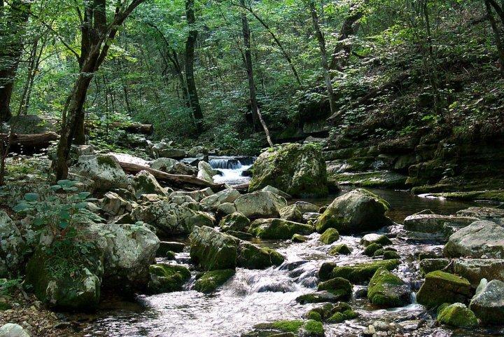 Mill Creek at Blanchard Springs