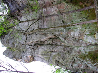 Rock Wall Above the Shelter Cave
