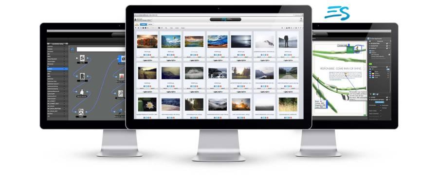 Dalim ES Project Management Software