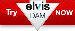 Elvis DAM