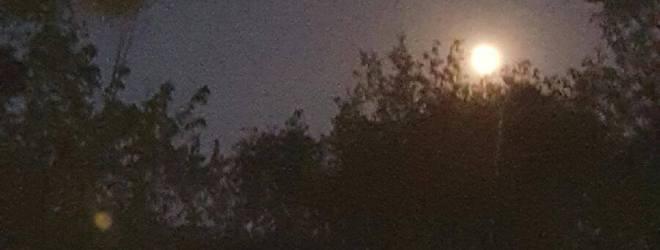 Moonlight Can Be Deceitful