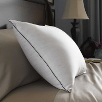 Pacific Coast Double Down Around Feather Pillow - 20 x 36 ...