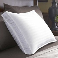 Restful Nights Down Surround Pillow - Extra Firm Density ...