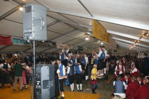 Blasmusik G Llersdorf Blasmusikfest 2009 0016