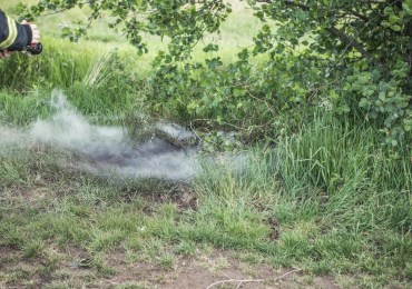Feuerwehr verhindert größeren Moorbrand in Hamburg-Moorburg