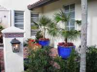 Modern Topical Landscape Design | Landscaping in Miami