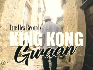 King Kong - Gwaan Video
