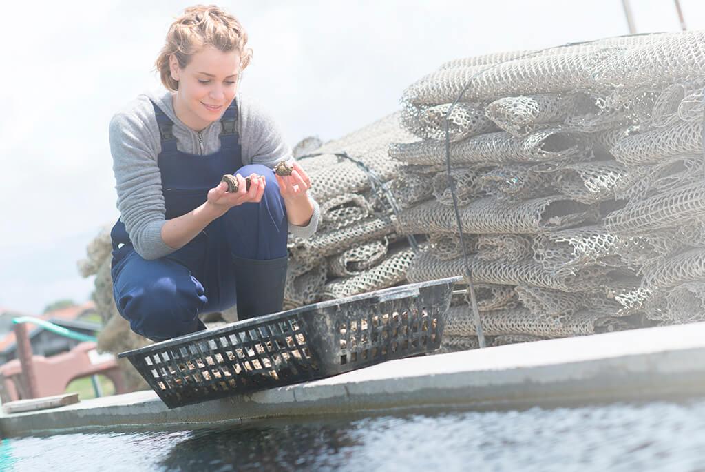 Ayudas para inversión en pymes del sector pesquero y acuicultura