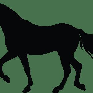 Pferd Silhouette BlechMal