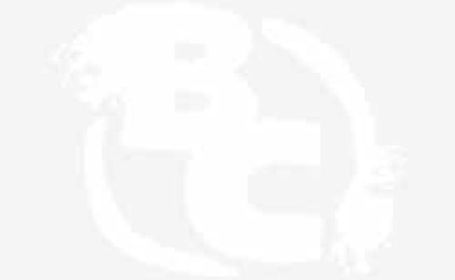 Jim Carrey Michel Gondry Headline Showtime Comedy Series