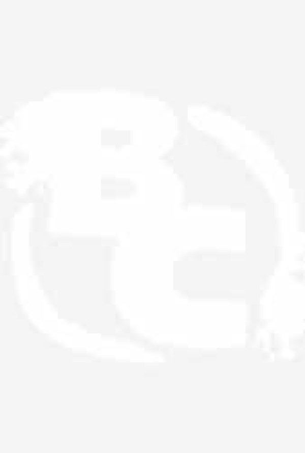 black panther poster allies enemies