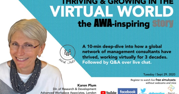 Thriving in the Virtual World | The AWA Story by Karen Plum
